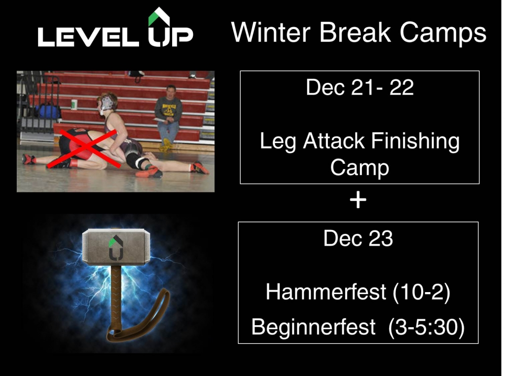 Winterbreak camps 2015
